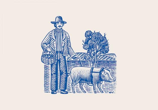 Schwein und bauer zum auffinden von trüffelpilzen. hausschwein. gravierte handgezeichnete vintage-skizze. holzschnittart. illustration. Premium Vektoren