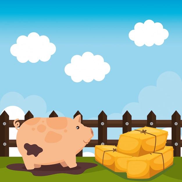 Schweine in der bauernhofszene Kostenlosen Vektoren