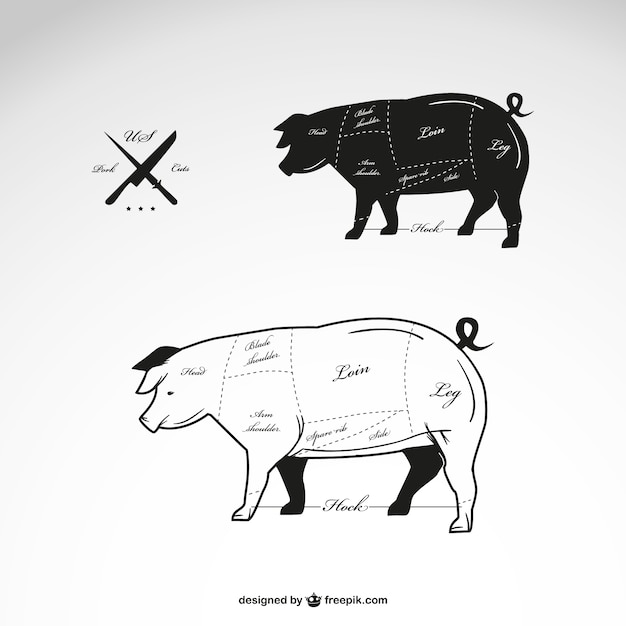 Schweinefleisch vektordiagramm Kostenlosen Vektoren
