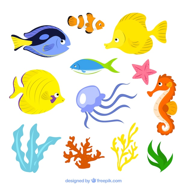 Sea life illustration Kostenlosen Vektoren