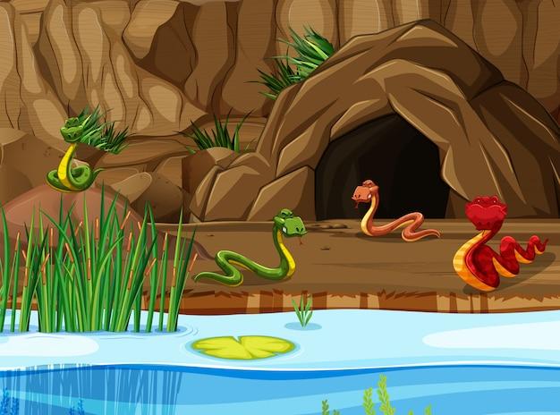 See- und höhlenszene mit schlangen Premium Vektoren