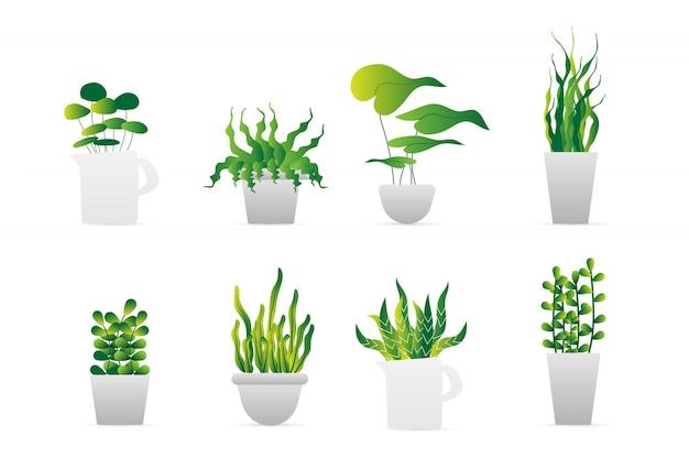 Set des grünen blumentopfes Premium Vektoren