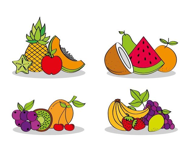 Set frische nahrungsmittelnahrungsmittelfrüchte Premium Vektoren
