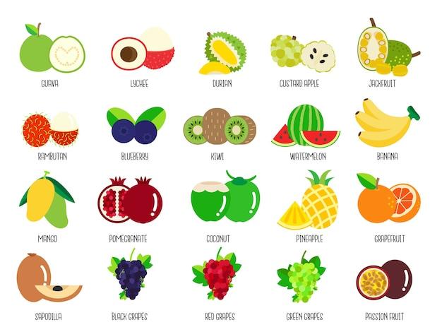 Set früchte Premium Vektoren