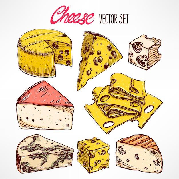 Set mit verschiedenen handgezeichneten käsesorten. handgezeichnete illustration Premium Vektoren