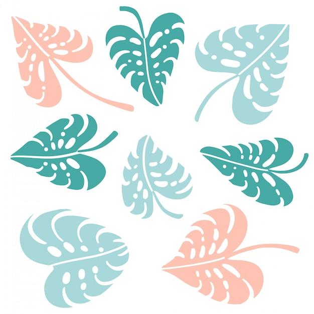 Set monstera tropical jungle plant grüne, blaue und rosa blätter. flache illustration auf weiß isoliert. herzform. Premium Vektoren