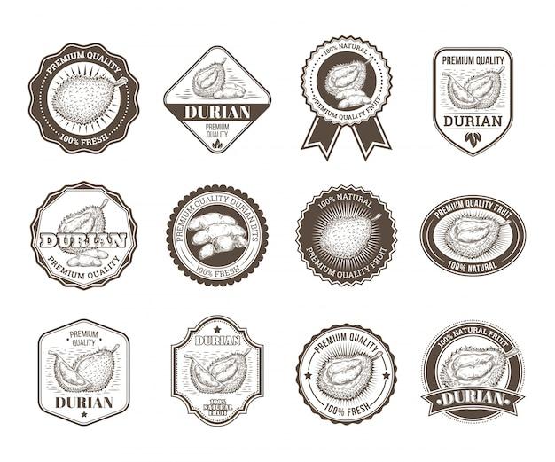 Set von schwarzen und weißen vektor-abzeichen, aufkleber, hochwertige zeichen, mit durian obst Kostenlosen Vektoren