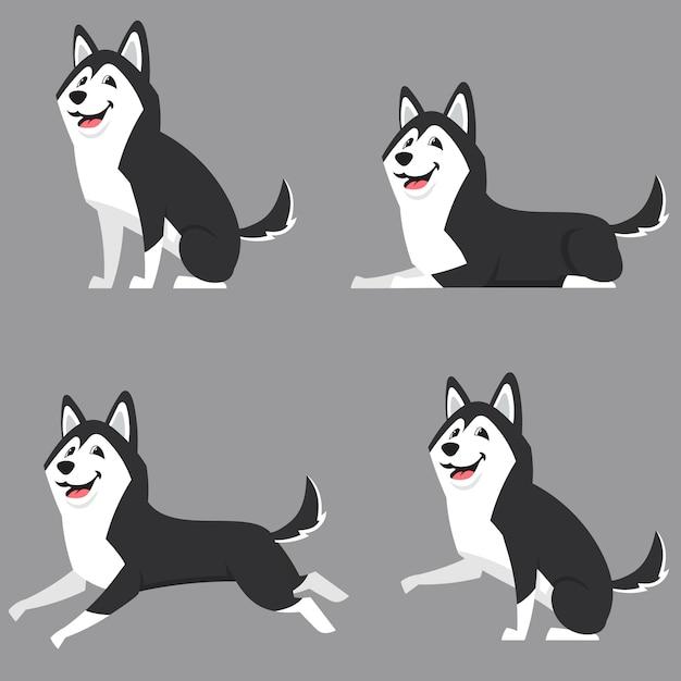 Siberian husky in verschiedenen posen. schöner hund im karikaturstil. Premium Vektoren