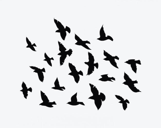 Silhouette eines vogelschwarms. schwarze konturen fliegender vögel. fliegende tauben. Premium Vektoren