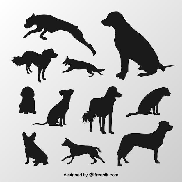 Silhouetten von hunderassen Kostenlosen Vektoren