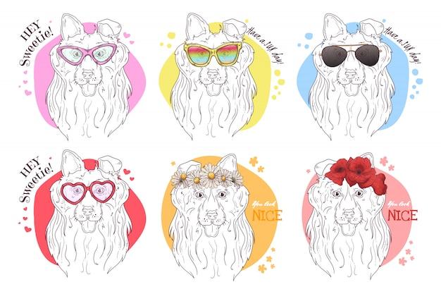 Skizze porträts von collie-hunden mit zubehör Premium Vektoren