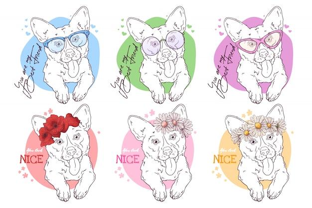 Skizzieren sie porträts von corgi-hunden mit zubehör Premium Vektoren