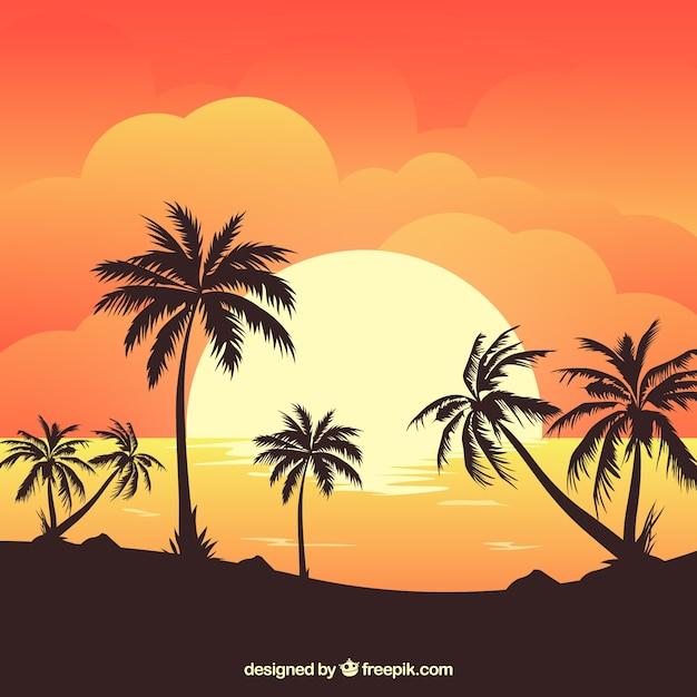 Sommer hintergrund mit sonnenuntergang und palmen Kostenlosen Vektoren