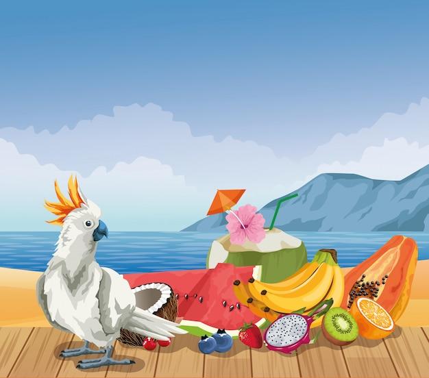 Sommerfrüchte und strand in der karikaturart Kostenlosen Vektoren