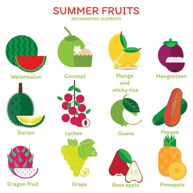 Sommerfrüchte. Premium Vektoren