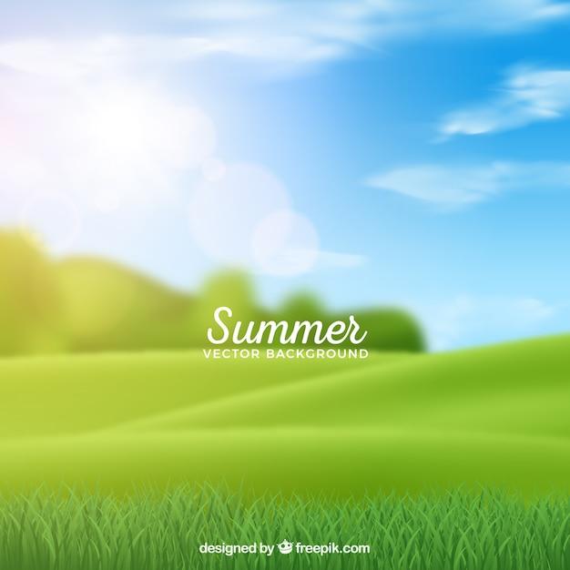 Sommerhintergrund mit unscharfer wiese Kostenlosen Vektoren