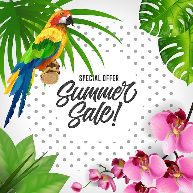 Sonderangebot sommerverkauf schriftzug. bunter tropischer hintergrund mit papageien und orchideen. Kostenlosen Vektoren
