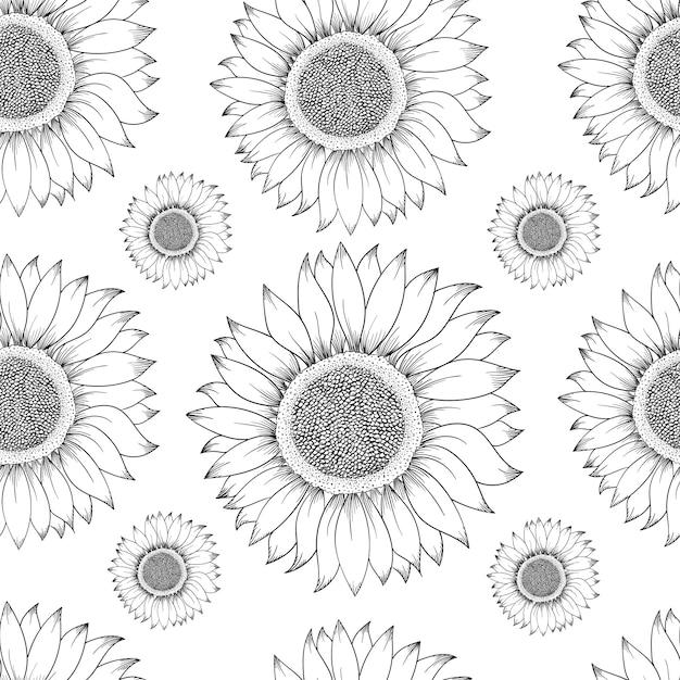 Sonnenblume nahtlose muster. hand gezeichnete illustration. lebensmittelzutat vintage skizze. Premium Vektoren