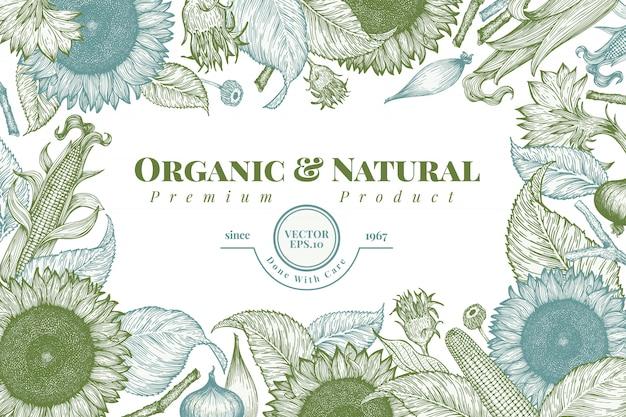 Sonnenblumen- und maisfeldschablone. sonnenblume banner design. Premium Vektoren