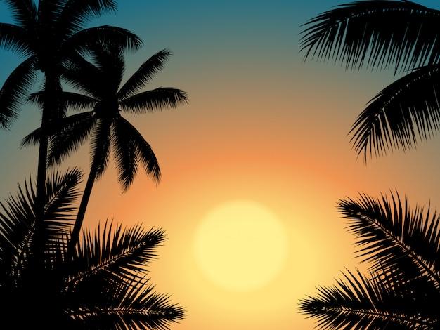 Sonnenunterganghimmel mit palmeschattenbild Premium Vektoren