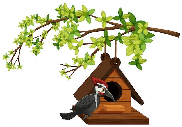 Specht, der im vogelhaus lebt Kostenlosen Vektoren
