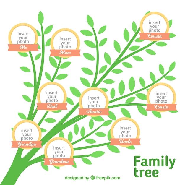 Stammbaum der grünen farbe Kostenlosen Vektoren