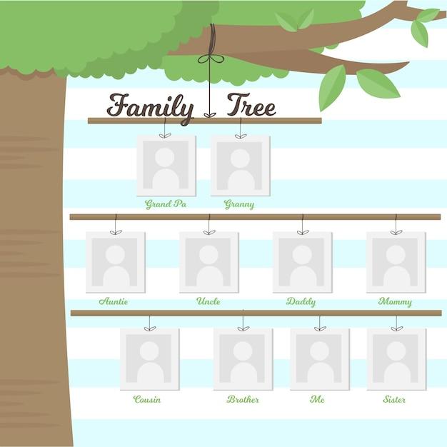 Stammbaum hängt an einem zweig Kostenlosen Vektoren