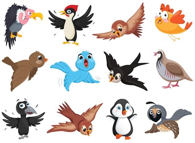 Stellen sie ff lustige vogelcharaktere ein Premium Vektoren