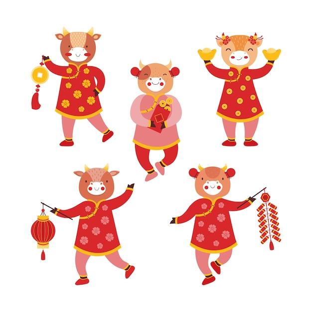 Stellen sie stiermädchen in rote traditionelle kleidung mit neujahrssymbolen ein. chinesischer neujahrsochse. goldmünzen Premium Vektoren