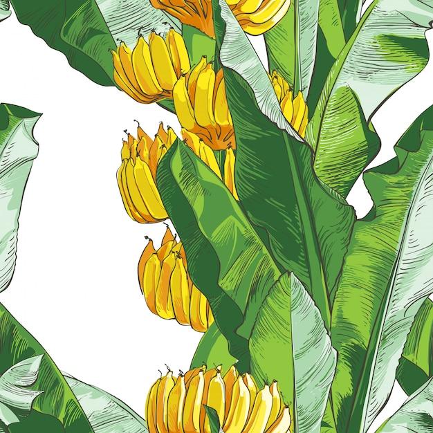 Strukturelles nahtloses muster der tropischen bananen-palme des vektors. Premium Vektoren