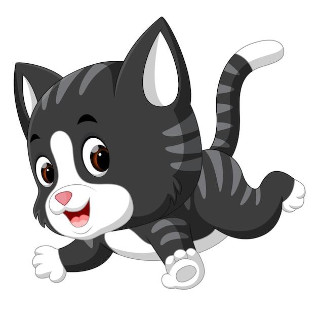 Katze Cartoon