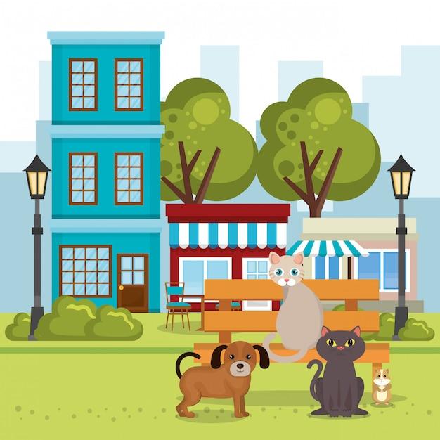 Süße maskottchen und zoohandlung symbole Kostenlosen Vektoren