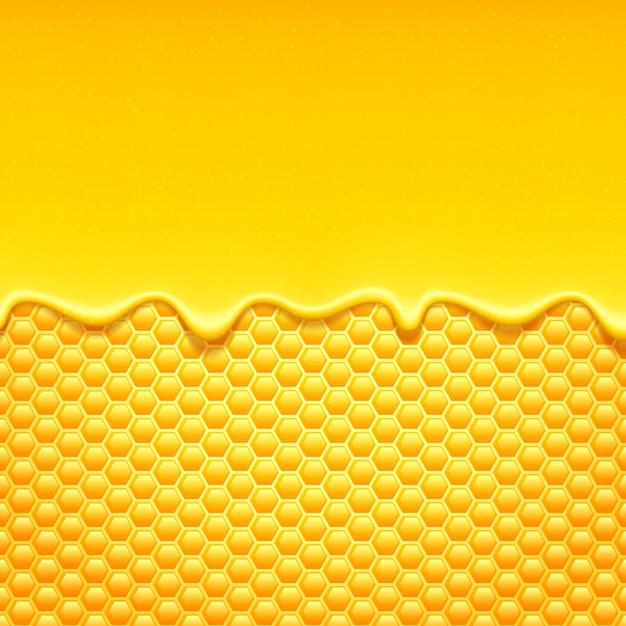 Süßer honig tropft mit bienenwabe. Premium Vektoren