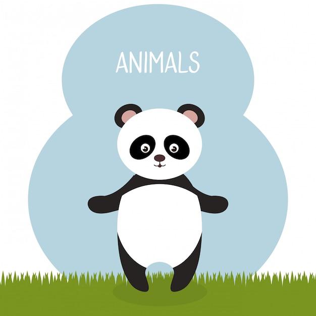 Süßer panda bär im feld landschaftscharakter Kostenlosen Vektoren