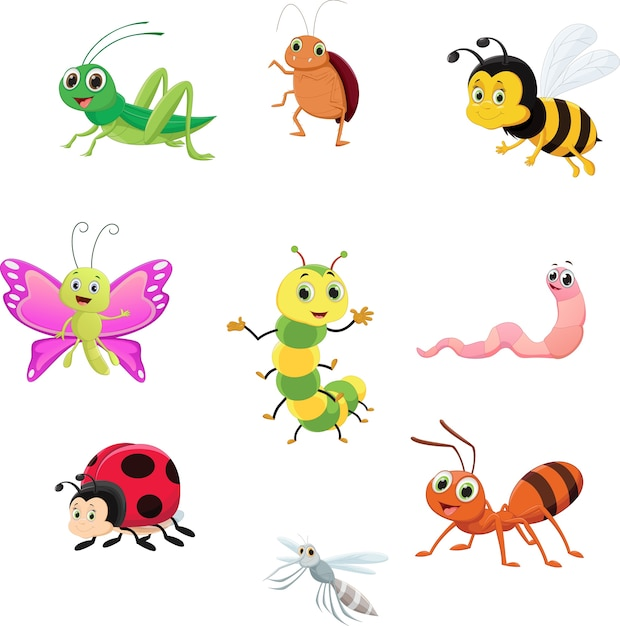 Süsses insektensammlungsset Premium Vektoren