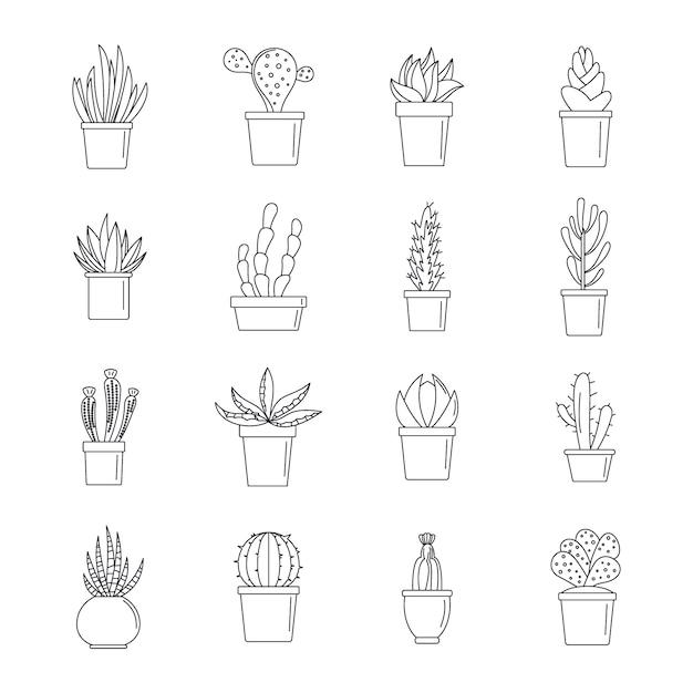 Sukkulenten- und kaktusikonen eingestellt Premium Vektoren