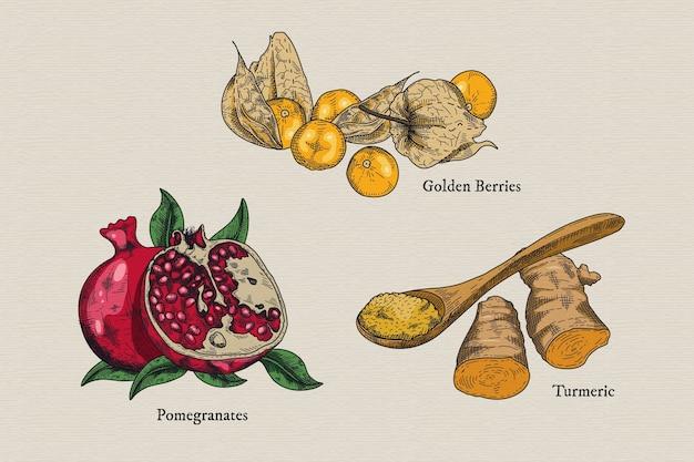 Superfood früchte illustration sammlung Kostenlosen Vektoren