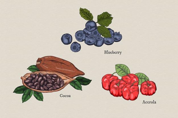 Superfood obst und kakao sammlung Kostenlosen Vektoren