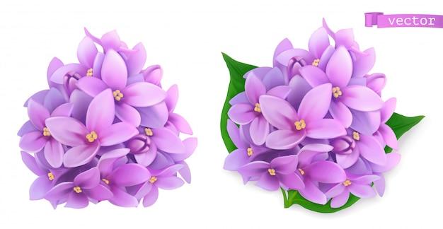 Syringa blumen, lila. realistische 3d-symbol Premium Vektoren