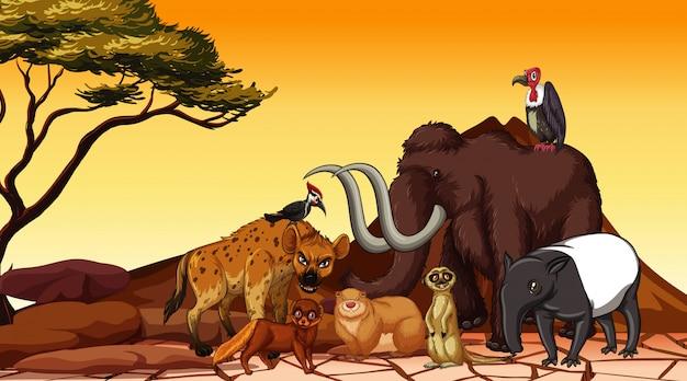 Szene mit vielen tieren auf dem feld Kostenlosen Vektoren