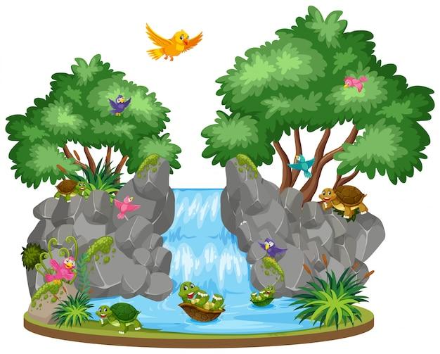 Szene von vögeln und schildkröten am wasserfall Premium Vektoren
