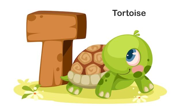 T für schildkröte Premium Vektoren