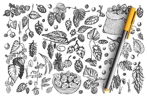 Tannenzapfen doodle set. Premium Vektoren