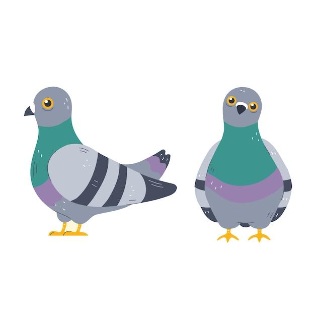 Taubenzeichensatz. cartoon charakter illustration symbol. auf weißem hintergrund isoliert. taube, taubenkonzept Premium Vektoren