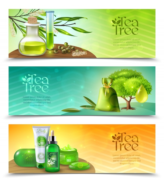 Teebaum horizontale banner Kostenlosen Vektoren
