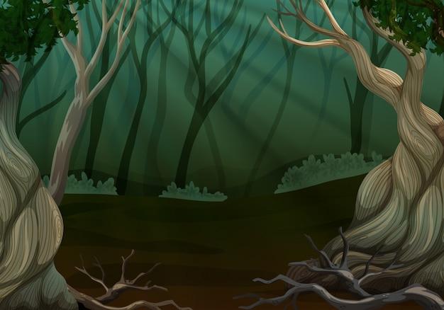Tiefe waldszene mit vielen bäumen Premium Vektoren