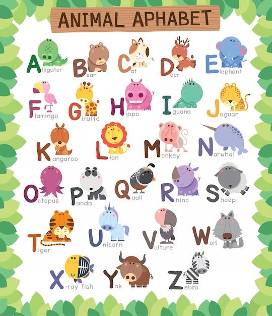tier alphabet bildung für kinder  premiumvektor