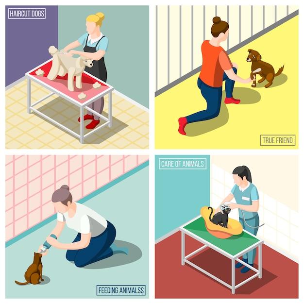 Tier-freiwilligen-isometrisches konzept des entwurfes Kostenlosen Vektoren