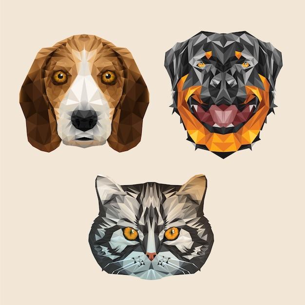 Tier haustier hund katze welpen kätzchen niedrig poly haustierfutter adorable Premium Vektoren