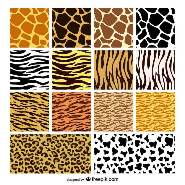 Tier Haut Textur Hintergrund Vektor-Material Kostenlose Vektoren